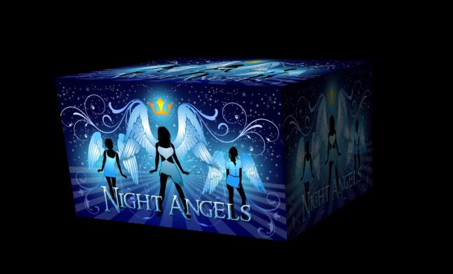 Night Angels 2g cub