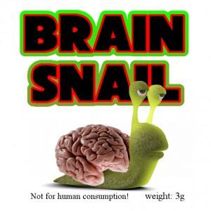 Brainsnail Raeuchermischung