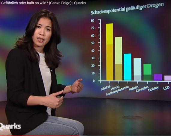 Drogen Gefahrenpotential Quarks Statistik